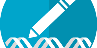 image of pencil writing dna strand