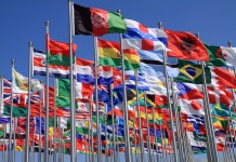 photograph of national flags flying at UN