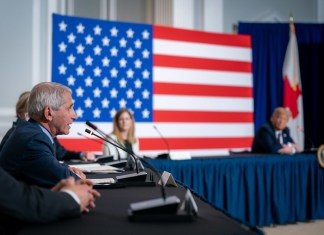 photograph of Dr. Fauci speaking on panel with American flag in background