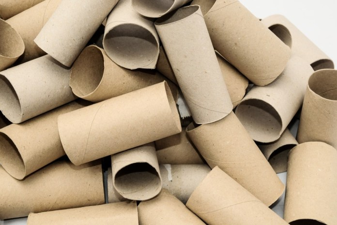 photograph of empty toilet paper rolls stacked