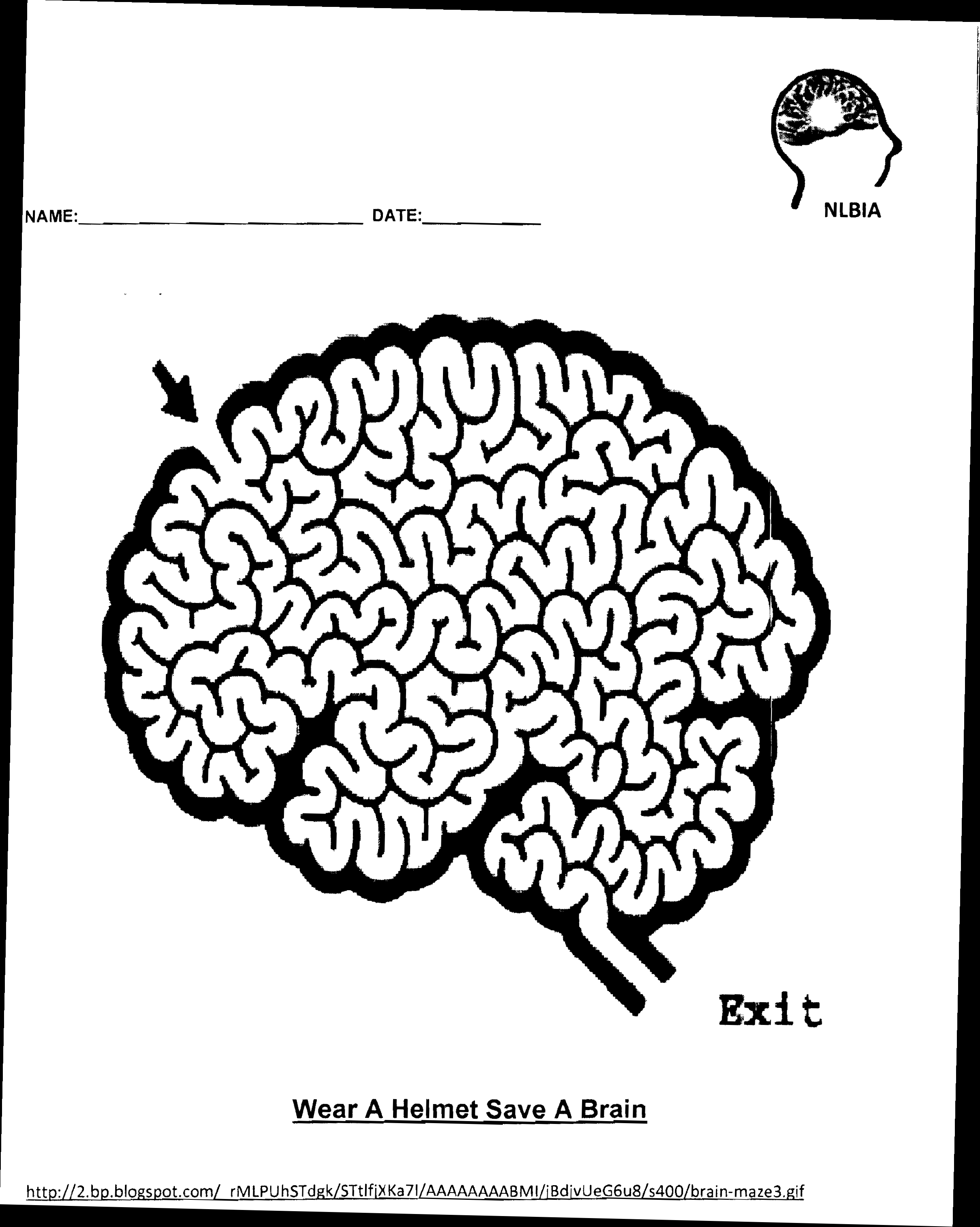 Brain Worksheet Coloring Pages
