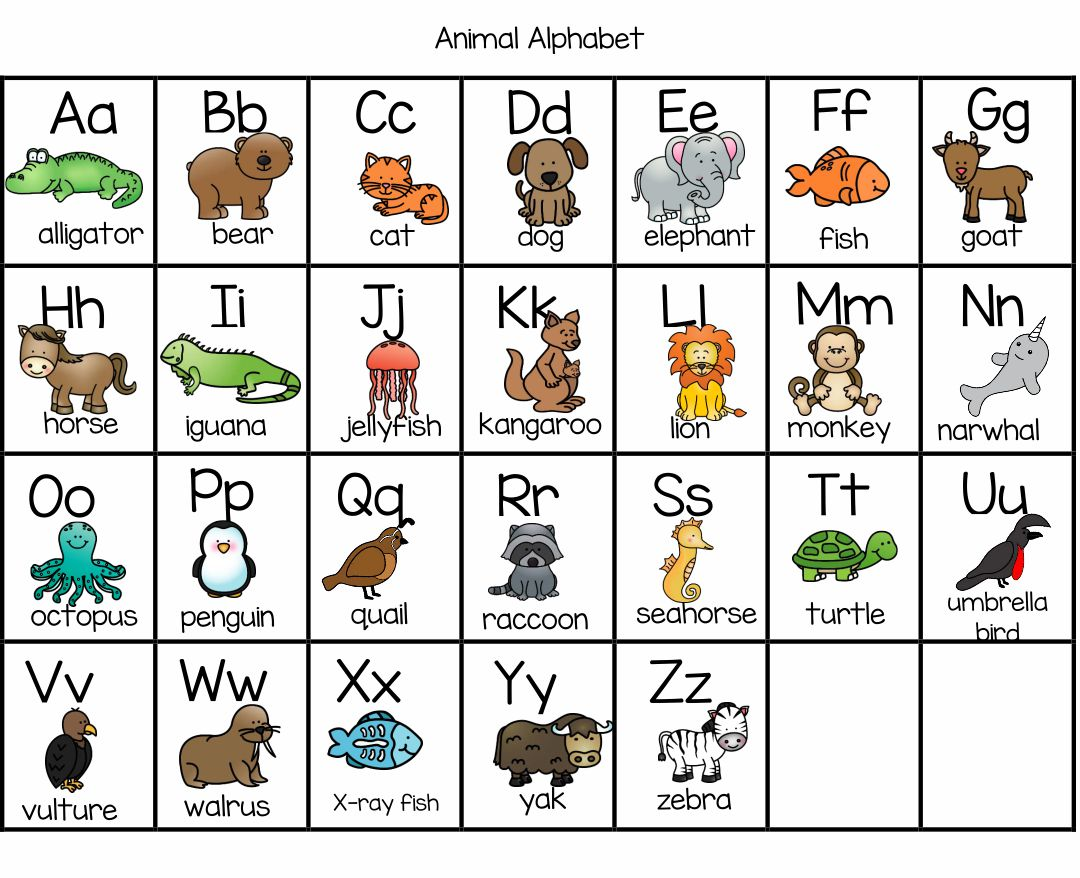 7 Best Printable Animal Flash Cards