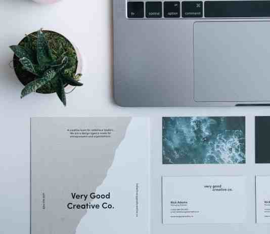 Printed flyer and business cards neatly displayed by a laptop and plant