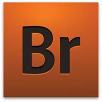 Thumbnail for Adobe CS4 Bridge Reviewed
