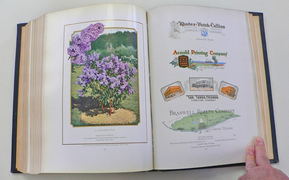 Left: a handcolored photograph. Right: assorted letterheads
