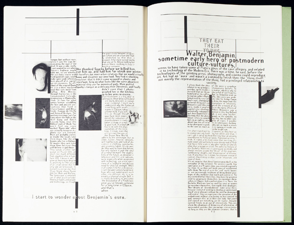 Spread from Emigre 32. Click to enlarge.