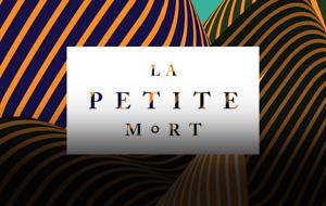 Thumbnail for La Petite Mort: Michael Ventura of Sub Rosa Talks Creative Side Project