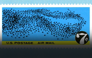 Thumbnail for Postage Cancellation
