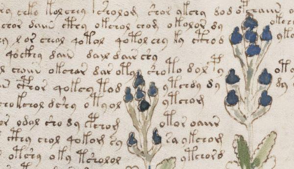 Thumbnail for The Voynich Manuscript: A Centuries-Old Print Riddle