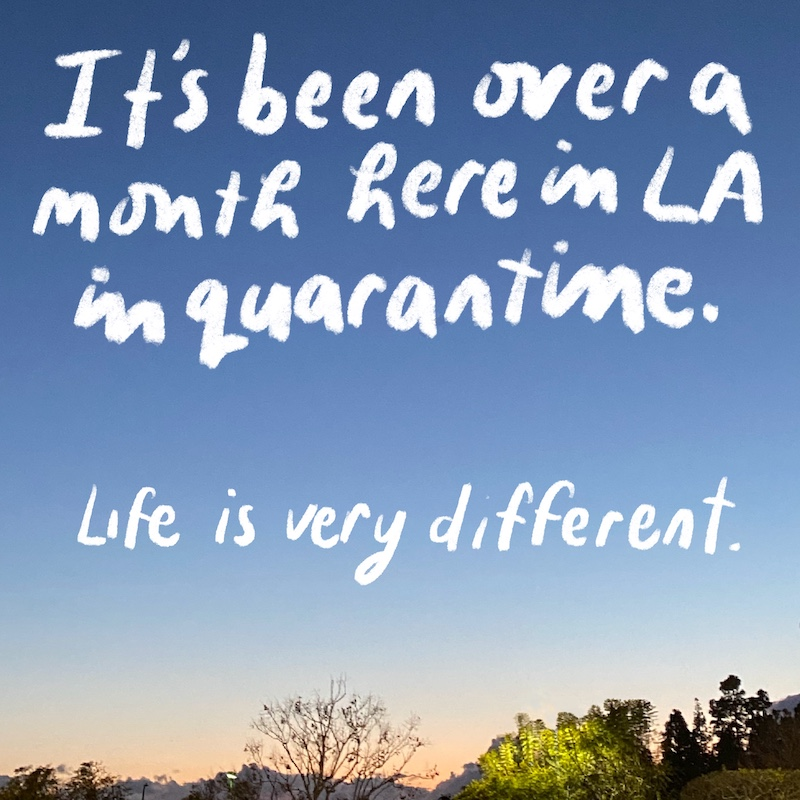 It's been over a  month here in LA in quarantine, life is very diffrent