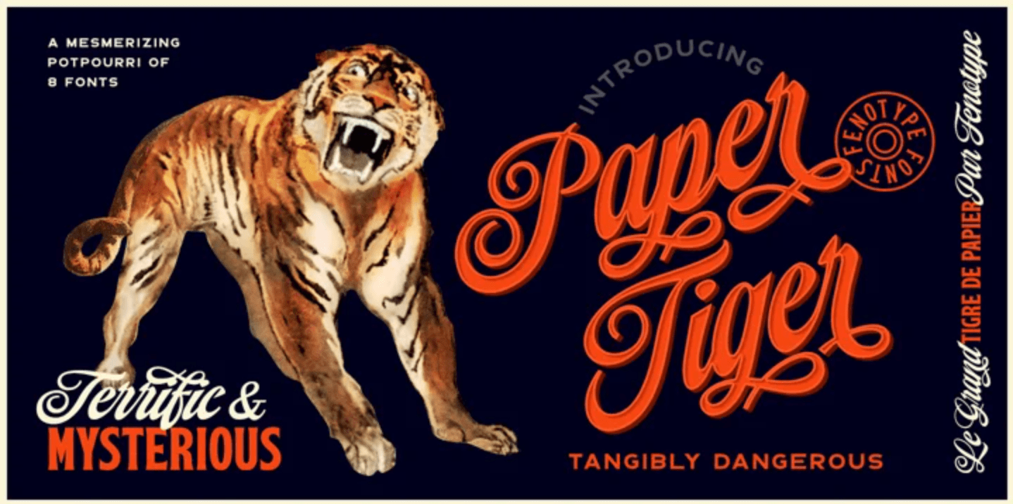 Thumbnail for Type Tuesday: The Feline Flair of Paper Tiger