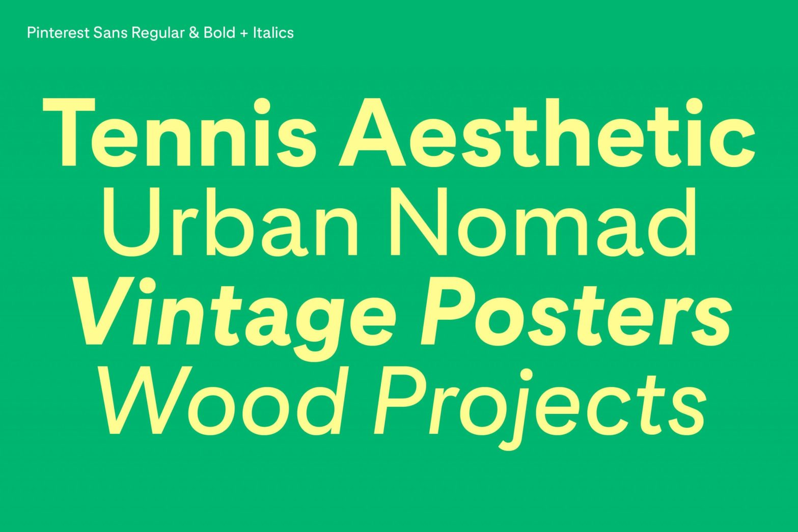 Thumbnail for Pin This: Pinterest Sans Custom Typeface By Grilli Type