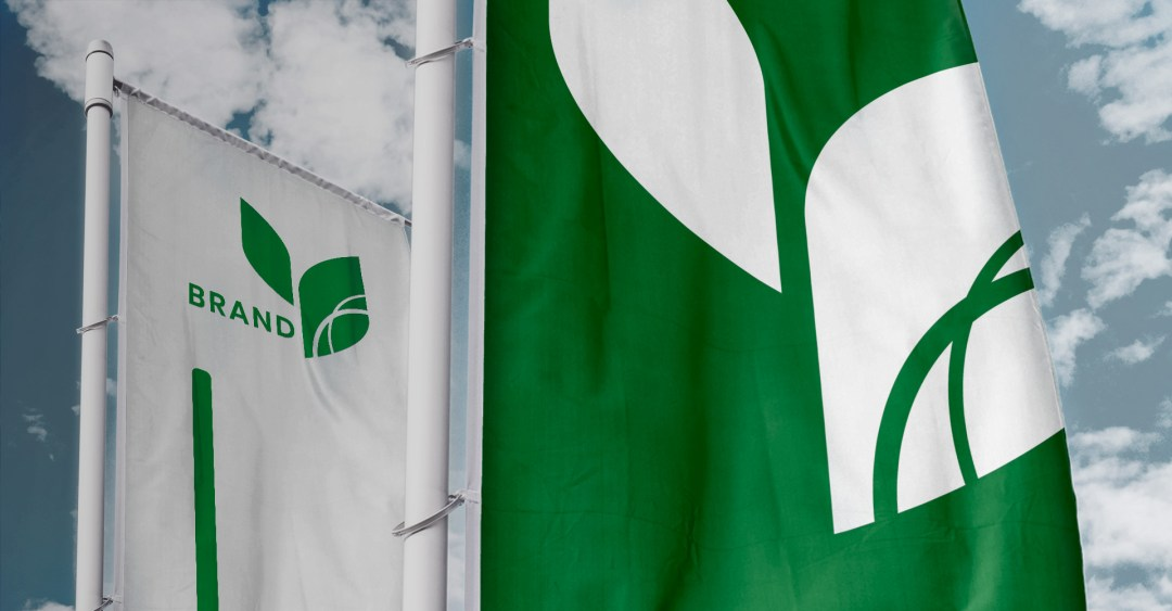 banderas_cover