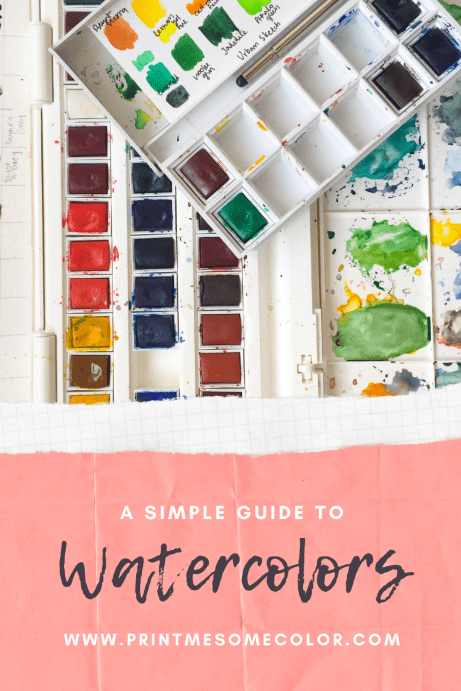 Beginner's guide to watercolor supplies  Simple guide to watercolors, waterciolor guide for beginners