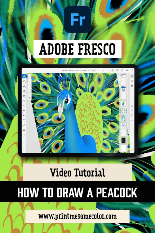 How to draw a Peacock in Adobe Fresco