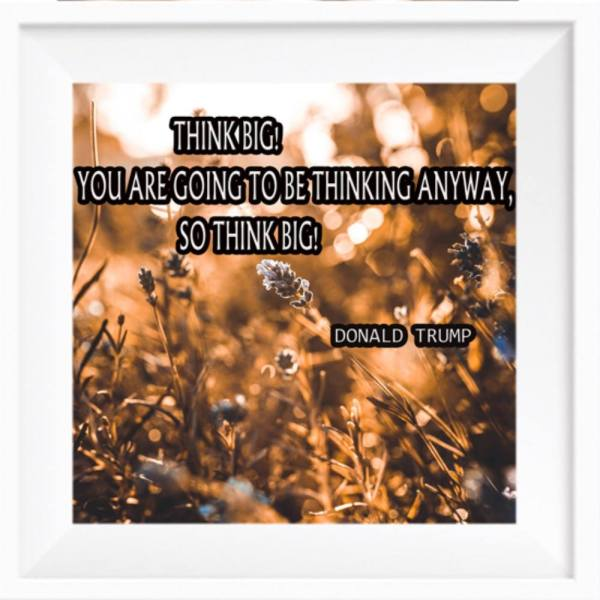 Motivational Posters PMS-00002063 1