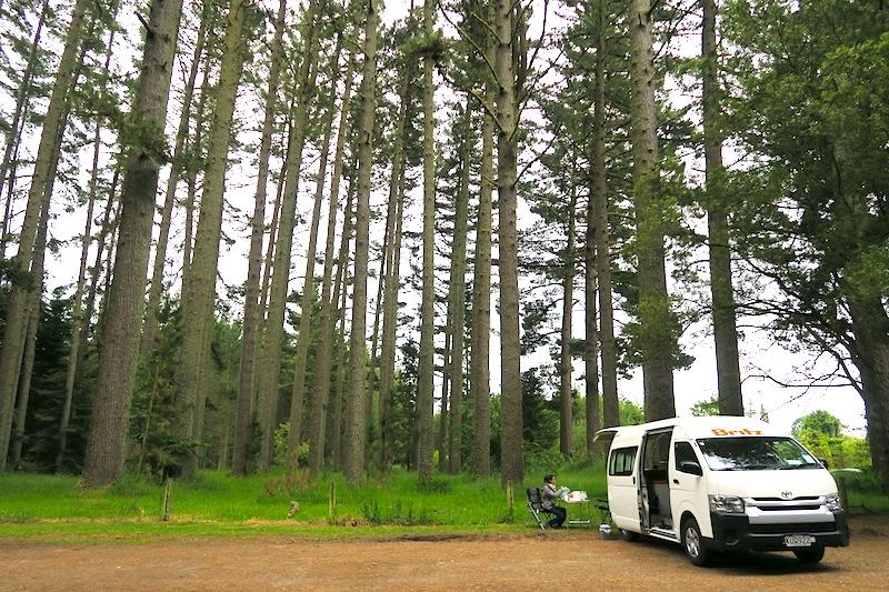 camping rotorua