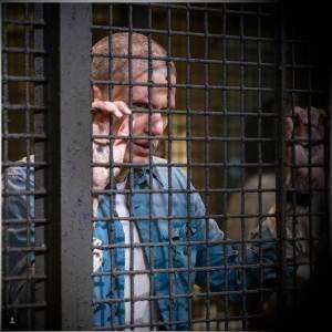 Scofield seizoen 5
