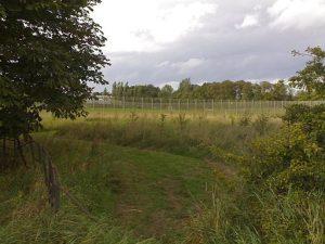 Kirklivingstone prison