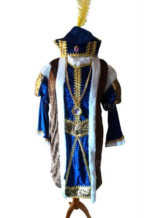 Henry VIII Tudor, Medieval, Historical, Book Day, Fancy Dress Costume