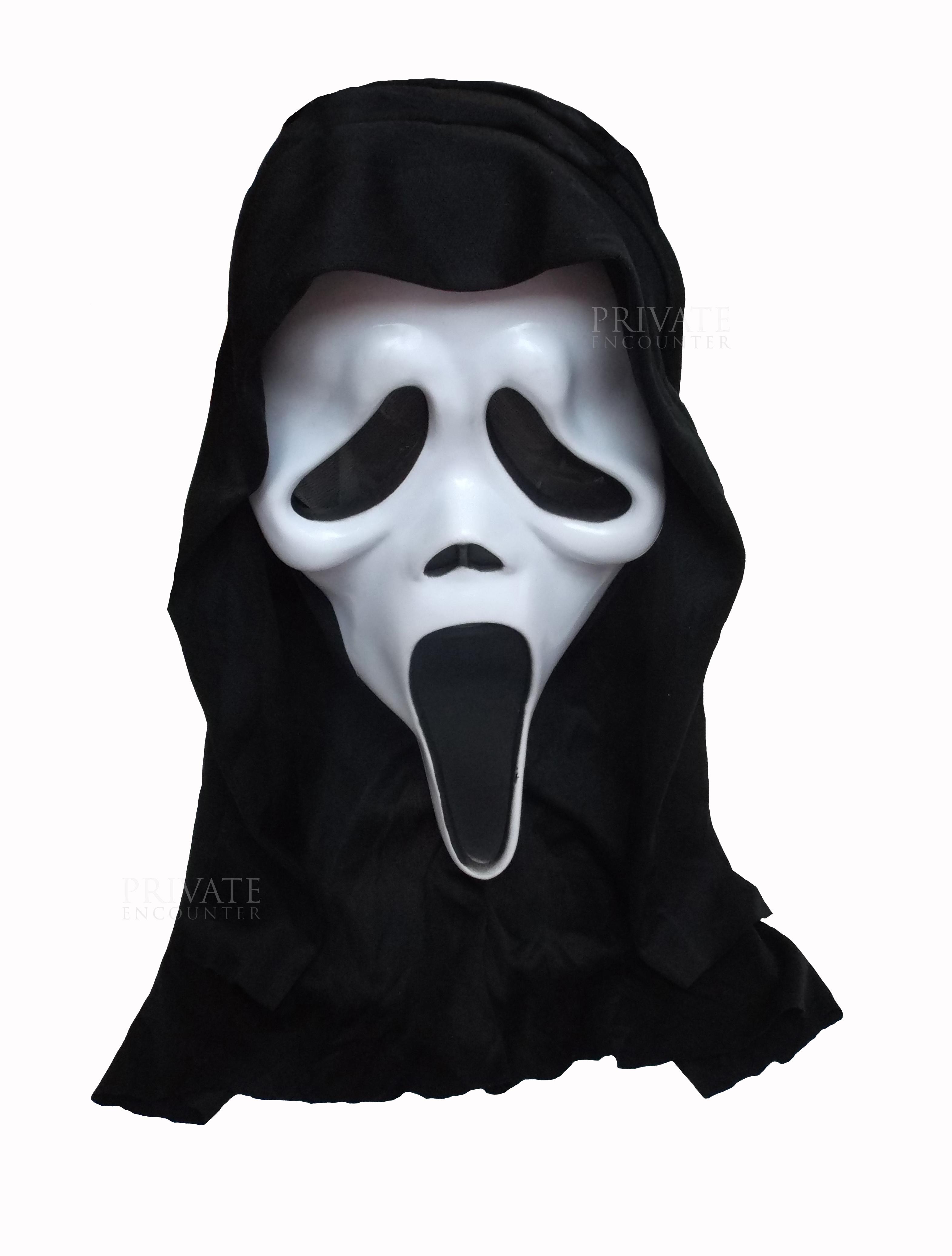 Adult Scream 4 Ghost Face Unisex Horror Face Mask & Hood ...