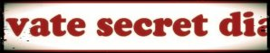 Private Secret Diary
