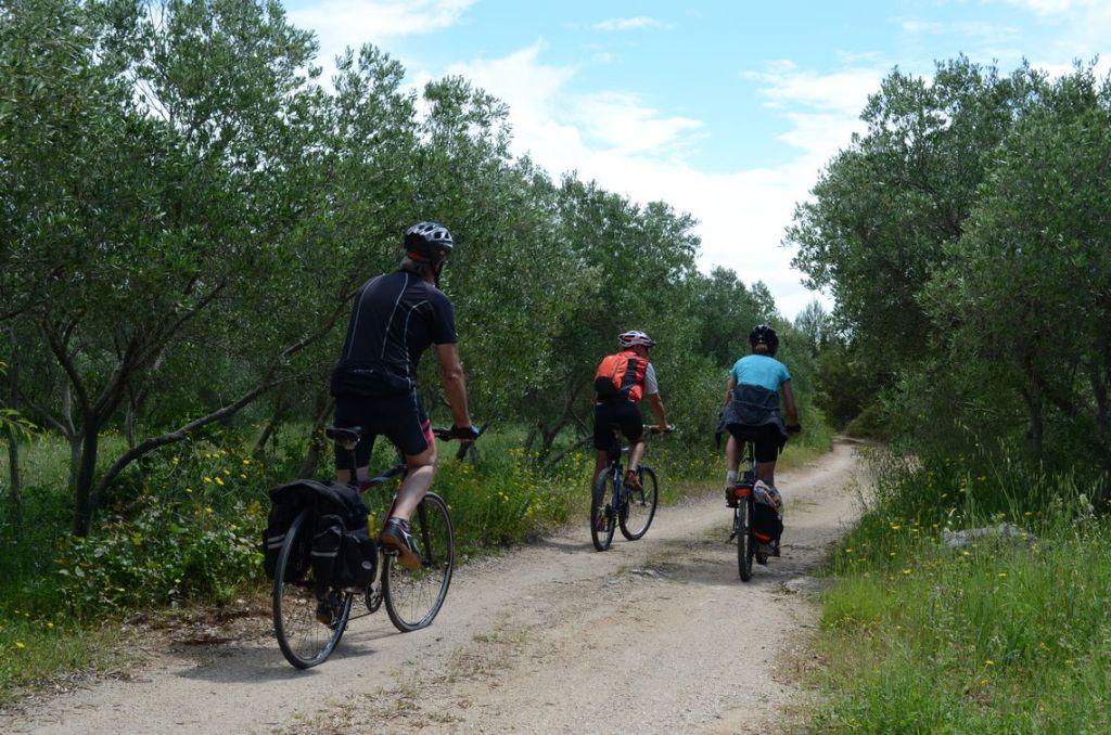 korcula-biking