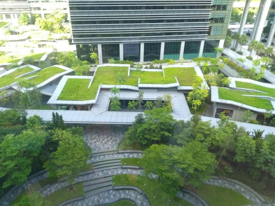 Suasana Luar Kantor Google Asia Pacific