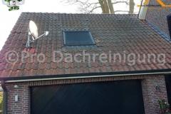 pro dachreinigung511