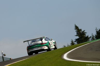 Porsche Mobil 1 Supercup Spa 2015 Come Ledogar (F)