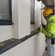 Removal of Pests in Blakeley