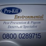 Bird Control in Chadderton