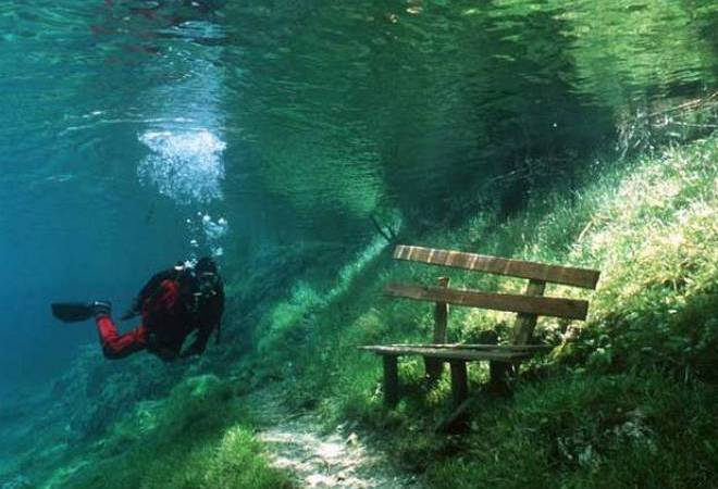 Парк на глубине зеленого озера