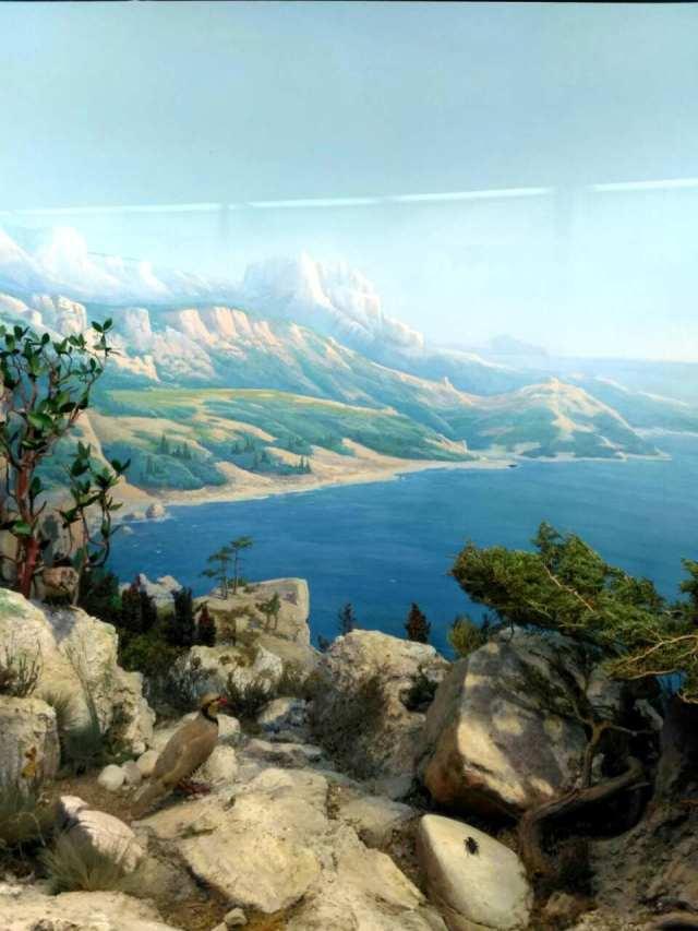 Фото Диорама Природоведческий музей
