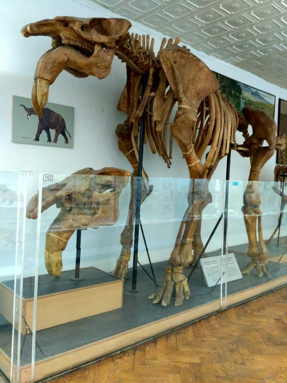 Познавательная экскурсия в киевский научно-природоведческий музей