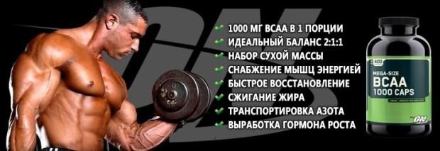optimum-nutrition-bcaa-1000-caps