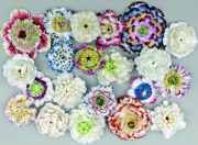 Les fleurs en porcelaine