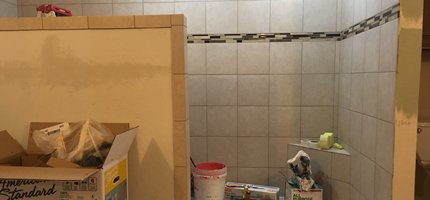 Remodeled roll-in shower in process