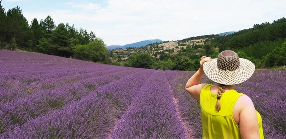 Stunning 2-Day Summer Road Trip To See Lavender in Provence France