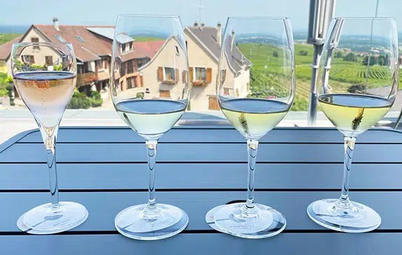 How to arrange a wine tasting in Alsace, France independently?