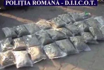 Retea de traficanti de cocaina si canabis destructurata la Braila