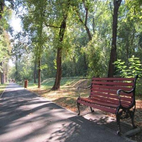 Reabilitarea Parcului Monument costa peste 9 milioane