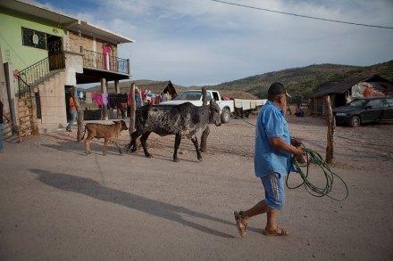 La comunidad de Carrizalillo en Guerrero.  Foto: Miguel Dimayuga