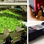 fresh produce chlorine testing