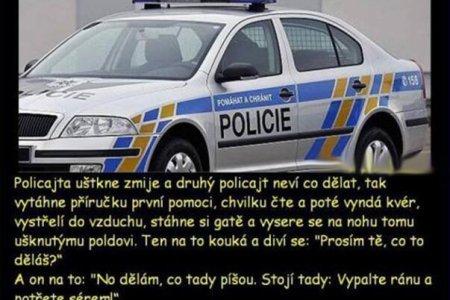 Vtip s policií