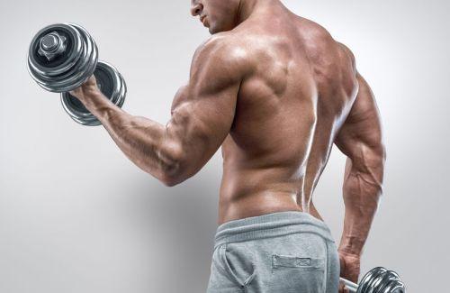 jak nastartovat růst svalů