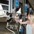 Robots Now Run Dairy Farms
