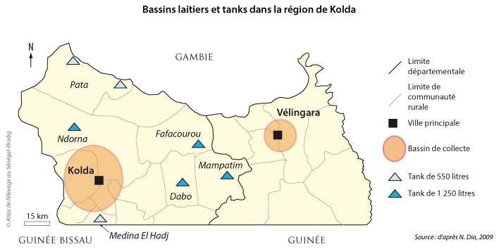 Sénégal-La filière lait, du global au local-Le bassin laitier autour de Kolda-Bassins laitiers et tanks dans la région de Kolda