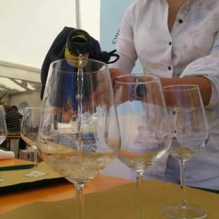 selezione vini