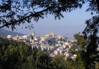 Feste del Verdicchio: la festa dell'Uva di Arcevia